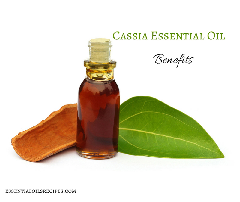 Cassia Essential Oil Benefits
