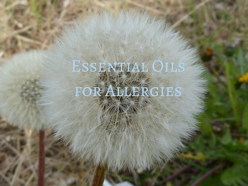Learn how to use essential oil for allergies