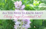 clary sage essential oil benefits