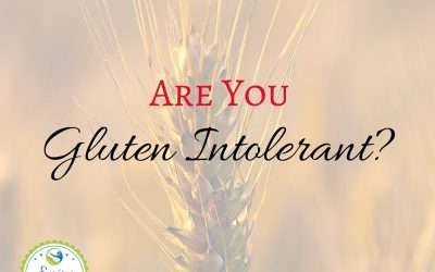 Are You Gluten Intolerant? Check out these 13 common symptoms of gluten intolerance and take action for better health.