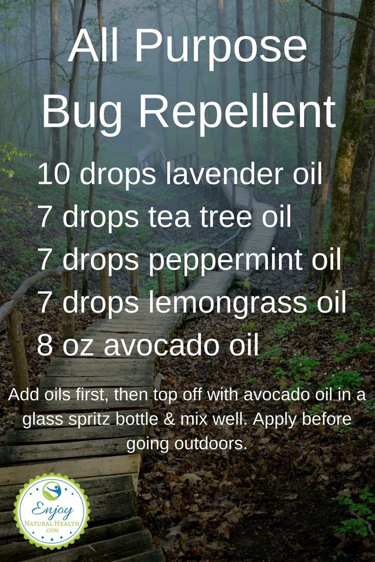 This all purpose bug repellent is very easy to make, is all natural, and will protect you as well, if not better than commercial bug sprays!