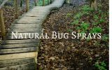Natural Bug Sprays