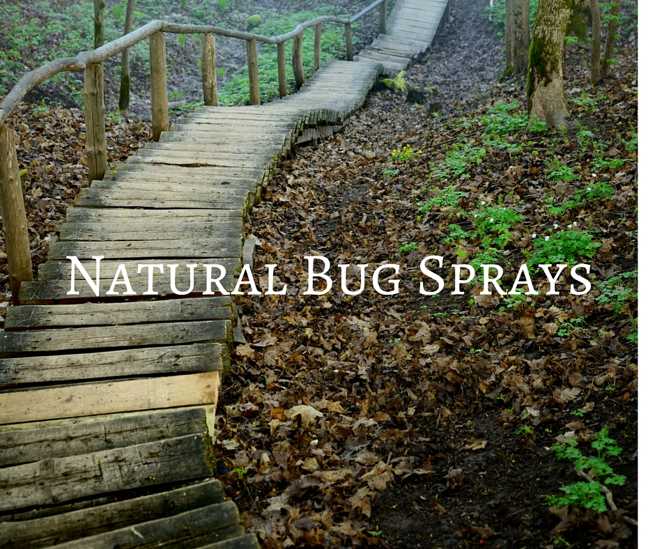 Natural Bug Spray Recipes