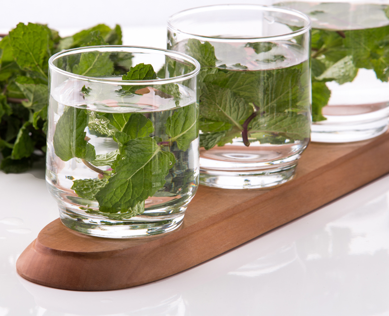 Summer fresh spearmint flavored infused water