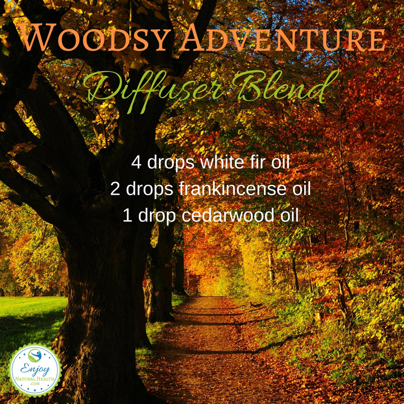 Woodsy- Adventure Fall Diffuser Blend