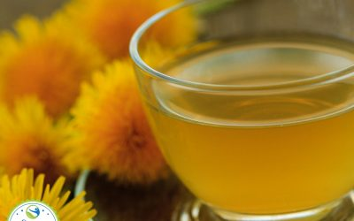 Dandelion Tea Health Benefits