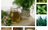 Herbal Remedies For Digestion