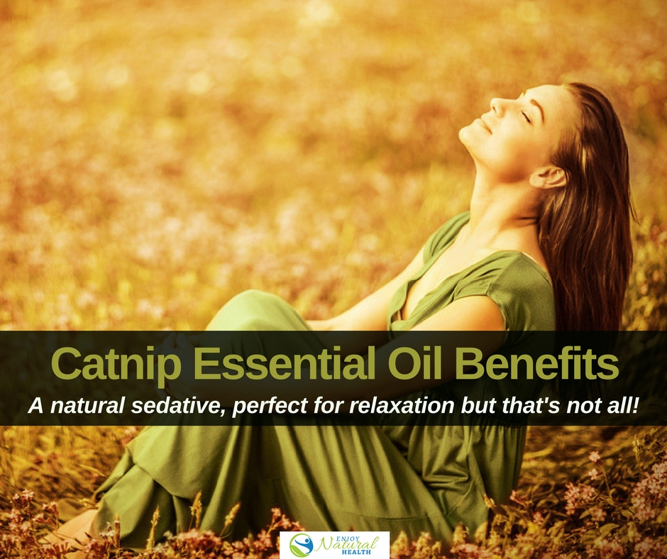 8 Ways To Use Catnip Oil For Better Health - Enjoy Natural