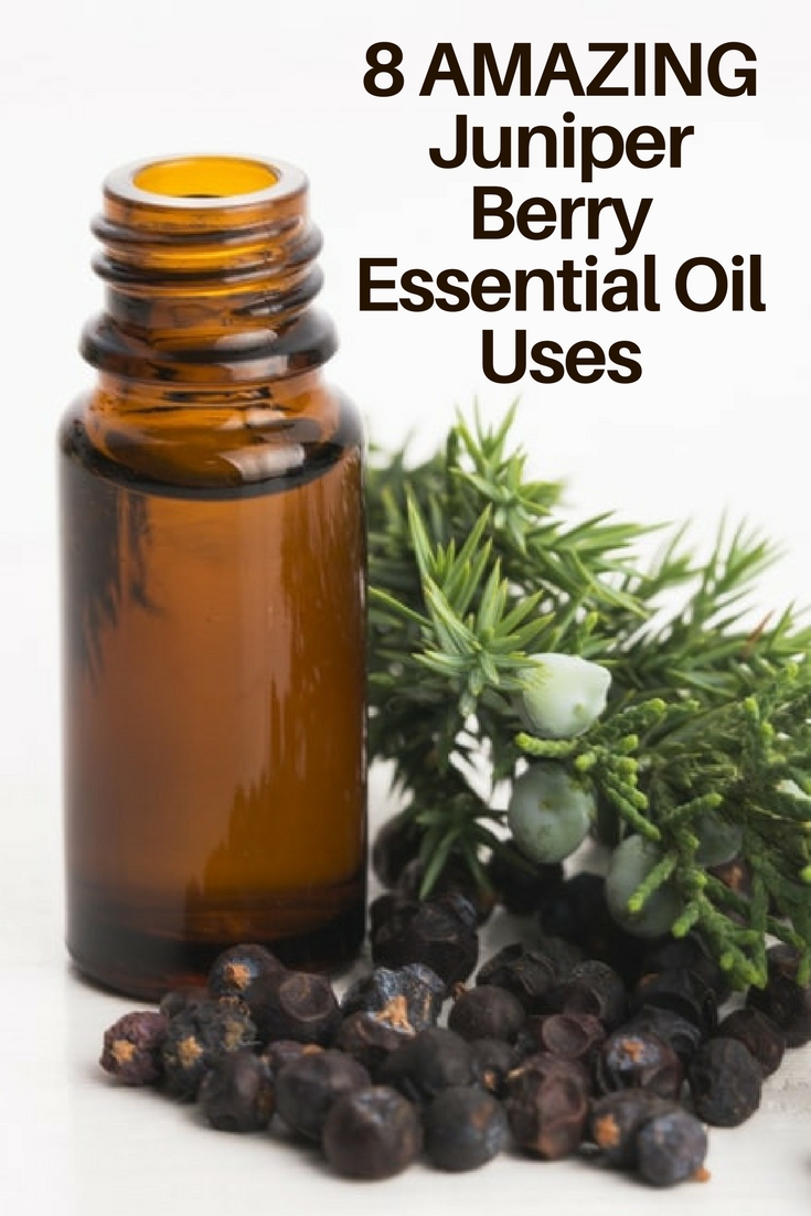 8 Amazing Benefits Of Juniper Berry Essential Oil